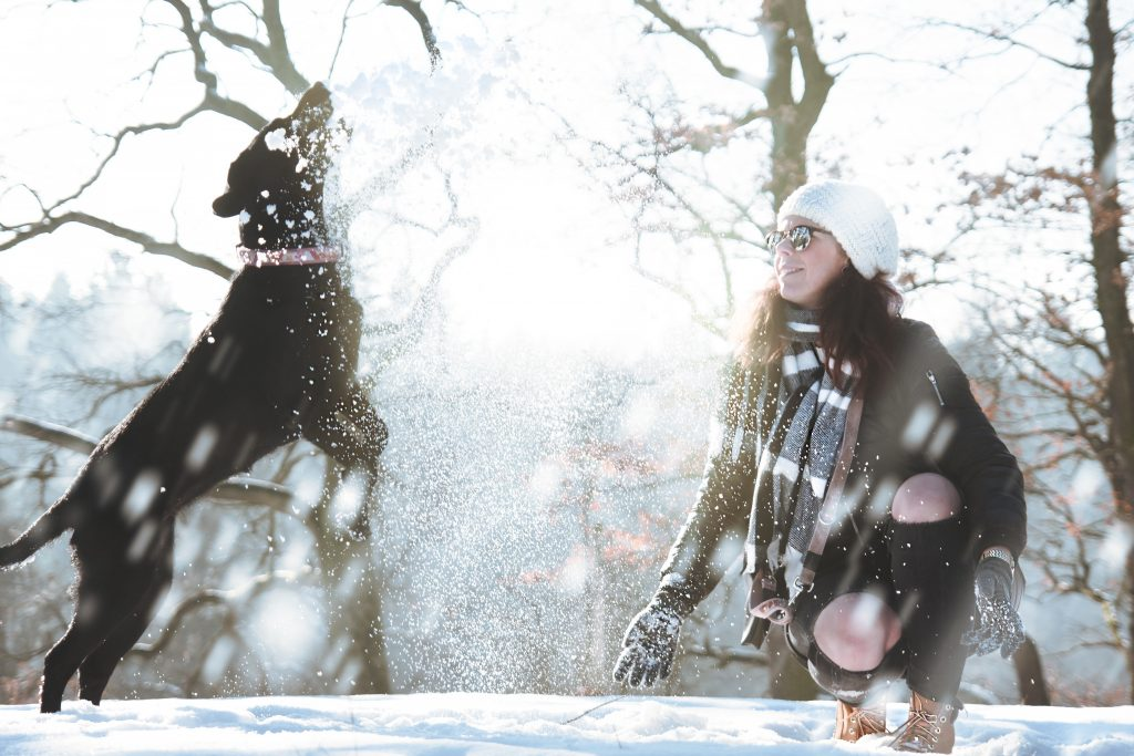 A dog and its human playing in the snow. Photo by Daniel Frank.